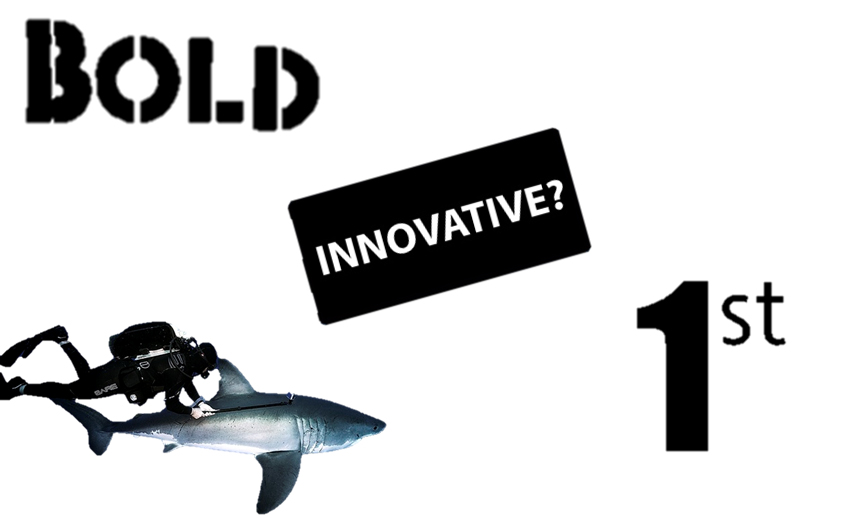 shark philosophy